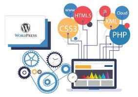 Award Winning Wordpress Web Development Services C