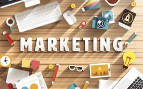 Small Business Marketing Has Potential More Than You Know